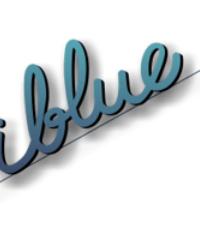 i-blue | DISEÑO WEB | empresasdemalaga.es