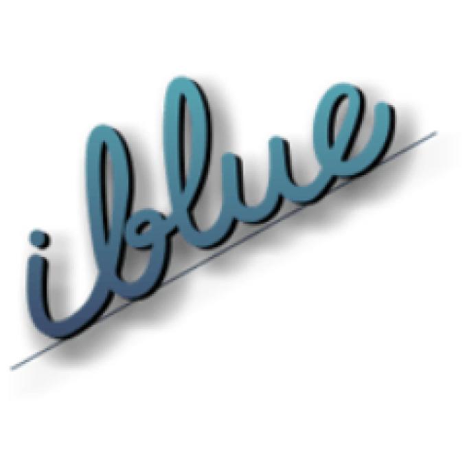 i-blue   DISEÑO WEB   empresasdemalaga.es